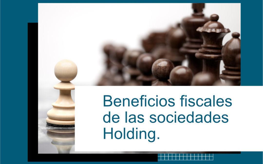 Beneficios de las empresas holding